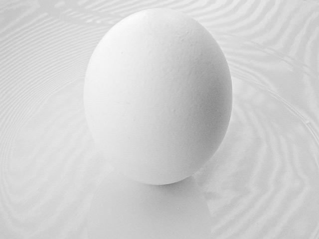 egg-m.jpg