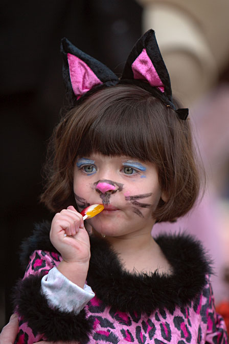 Basic Kitty Face Paint Basic Kitty Face Paint Does