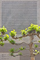 Niikuni Seiichi, Shu Kawa, Wall Poem in Leiden