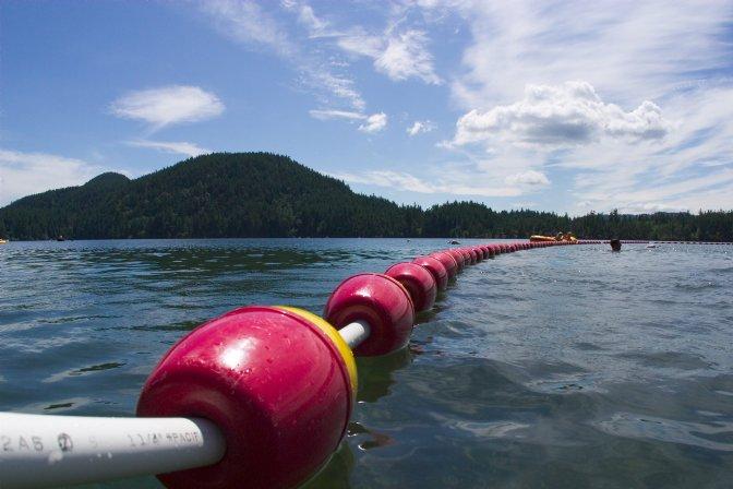 SwimBoundary-m.jpg