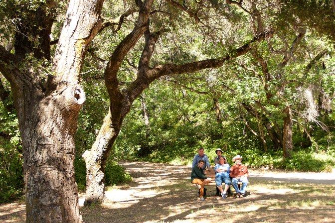 Bench in memory of Erik Cassel at Stevens Creek Park, Santa Clara County, California