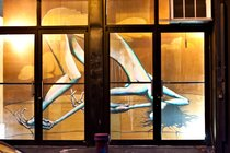 Daryll Peirce, Willoughby Windows, Brooklyn