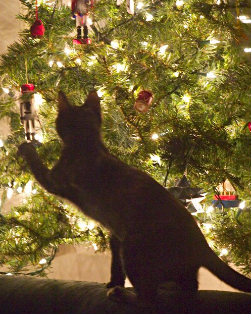 Christmas tree cat Christmas tree cat tower
